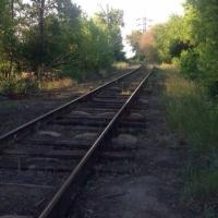 Омичей предупреждают о маньяке в Чкаловском поселке