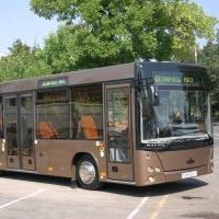 Автобусы МАЗ признали лучшими