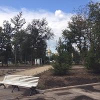 В пяти городах Омской области облагородят парки