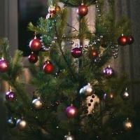 Омская модель рассказала о традиции украшать елку
