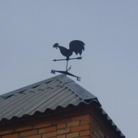 Из-за сильного ветра в Омской области объявлено штормовое предупреждение
