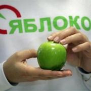 """Список """"Яблока"""" в Горсовет зарегистрирован избиркомом"""