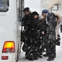 Муниципальные автобусы Омска перевезли за год 74 млн пассажиров