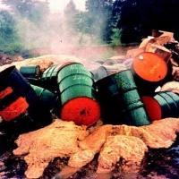 Директор компании «Мерк» обвиняется в экологическом ущербе области на 90 млн рублей