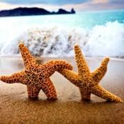 Туристический портал – незаменимый помощник в организации отдыха