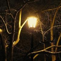 Омичи обрадовались включению фонарей на улице Барабинская