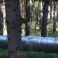 Три дня будут проверять теплосети в Кировском округе Омска