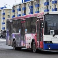 Из автобусного маршрута до Больших Полей исключат остановку «Ателье «Пушинка»