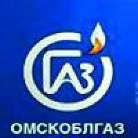 Несмотря на неудачи, гендиректором «Омскоблгаза» остался Еловик