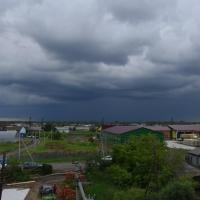 Штормовое предупреждение: в Омской области шквалистый ветер