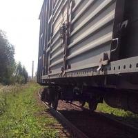 Сотрудники транспортной полиции задержали двух омичей за кражу деталей грузового вагона