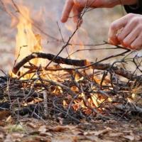 МЧС предлагает с 27 апреля ввести в Омской области противопожарный режим
