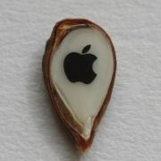 Apple  в  яблоке