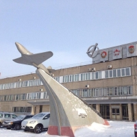Омский «Полет» предложил вырубить тополя