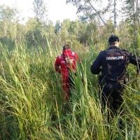 Потерявшуюся 5-летнюю девочку нашли живой в лесу спустя четверо суток