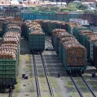 Особенности перевозки леса железнодорожным транспортом