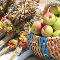 Омичей угостят мёдом и яблоками