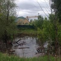 Готовность к паводку намечена на 20 марта
