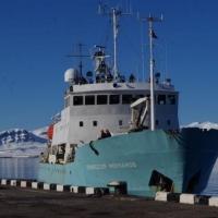 Исследователи обнаружили в Арктике уникальные артефакты