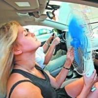 Автоинспекторы справятся о самочувствии омских водителей