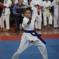 В Омске составили рейтинг сильнейших детей-каратистов