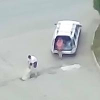 Новая «дорожная фея» в Омске