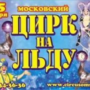 "В Сочи - Олимпиада, в Омском цирке - ""Цирк на льду"""
