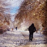 Погода в Омске со 2 по 6 октября