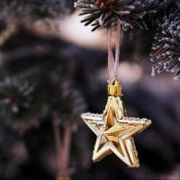 На открытии главной Елки омичи отправятся «За счастливой звездой!»