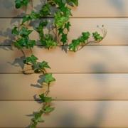 Недорогой обшивочный материал для отделки фасада