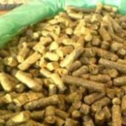В Омской области планируется организовать производство биотоплива