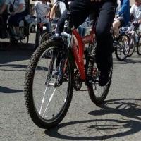Омичей просветили в культуре безопасности на велодорожках