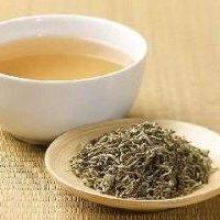Почему растет популярность белого чая