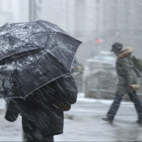 О плохой погоде в Омской области предупредило МЧС