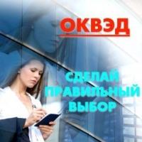 ФНС России вводит новый Общероссийский классификатор видов экономической деятельности