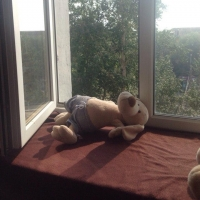 В Омской области  4-летний мальчик выпал со второго этажа