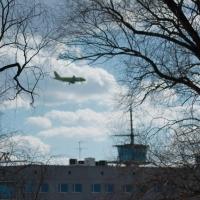 Авиакомпания «Сибирь» запустит прямые рейсы из Омска в Петербург