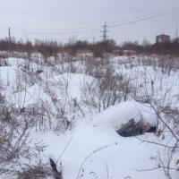 Волонтеры «ДоброСпас-Омск» участвуют в поисках  четверых пропавших омичей