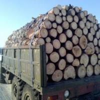 В Омской области водителя раздавило бревнами