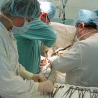 В Омской области впервые прошла операция по пересадке печени