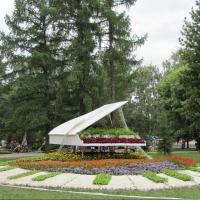 В канун Дня города в Омске открывается «Флора»