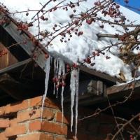 На шестое марта омские синоптики передают +3 градуса днем и сильный ветер