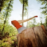 Лесник из Кормиловки нарубил подведомственный лес на 600 тысяч