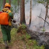 Омских спасателей отправят тушить пожары в Сибири