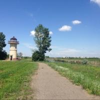 Центр экологического мониторинга торжественно откроют в Омске