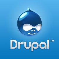 Омских программистов с нуля обучат Drupal CMS