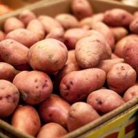 Продажа картофеля через интернет закончилась для омички хищением почти 150 тысяч рублей