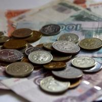 Аграрии Омской области заплатили на 35,6 млн рублей налогов меньше, чем в прошлом году