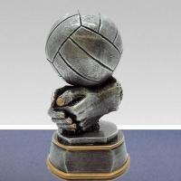 Омские любители и ветераны спорта сыграли в волейбол