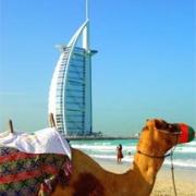 Арабские Эмираты ближе, чем кажется
